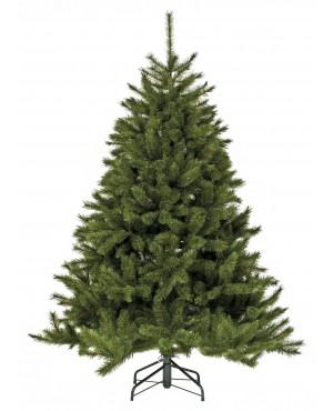 Триумф Лесная красавица 120 см