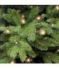 Искусственная елка Triumph Tree Нормандия с огоньками 305 см зеленая