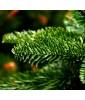 Искусственная елка Triumph Tree Нормандия 215 см темно зеленый